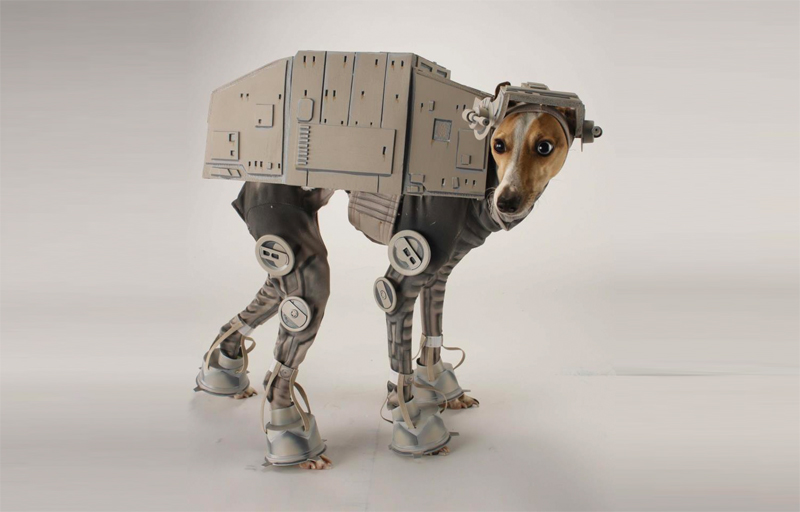 katie mello creates a hilarious star wars at at costume for dogs