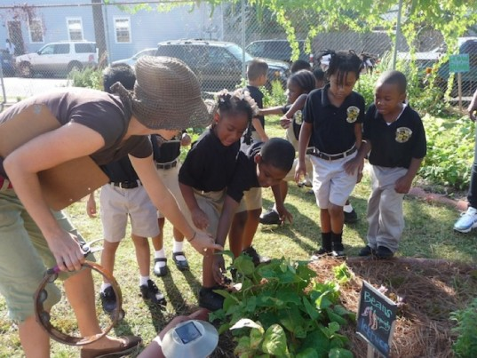 environmental education, edible schoolyard new orleans
