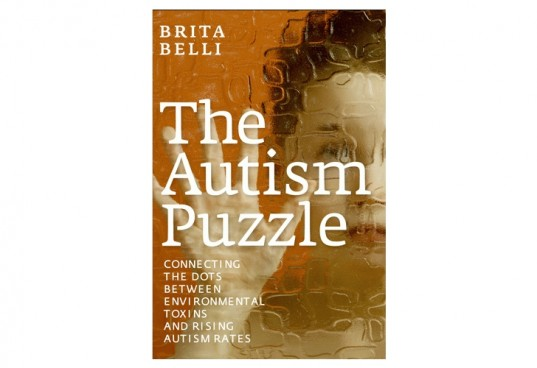 Autism Puzzle, autism book, earth day book, autism, toxins and rising autism rates
