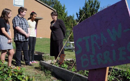 farm to school program, farm fresh school lunch, healthy school lunch, healthy food, healthy kids, new school lunch rules, new school lunches, USDA, school lunch program, subsidized school lunches, farm to school, eco education, farm education
