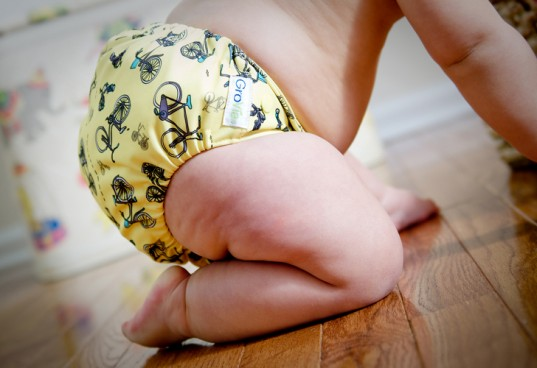 cloth diaper must haves, grovia, hybrid diaper