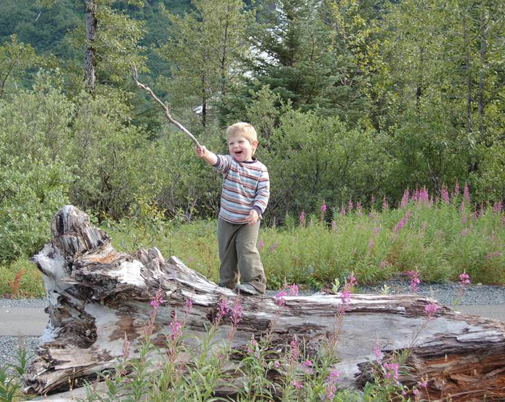 Playgrounds With Natural Elements Offer More Benefits For Children Than Traditional Parks