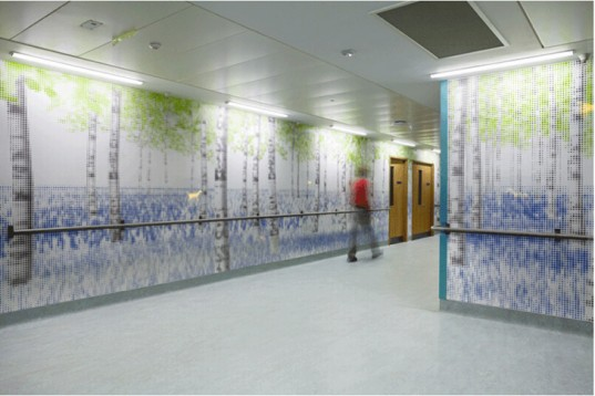 nature trail, jaosn bruges studio, great ormond hospital, led, wallpaper, forest, patients