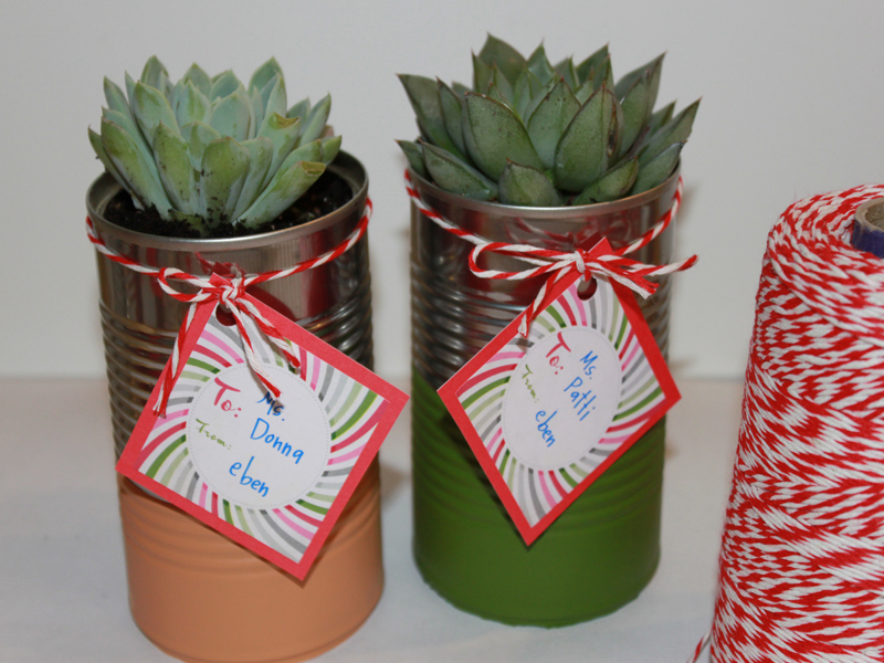 last minute diy holiday gift organic succulents in