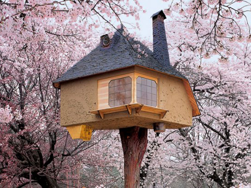 Tree Houses: Fairy Tale Castles In The Air Features 50 Breathtaking on
