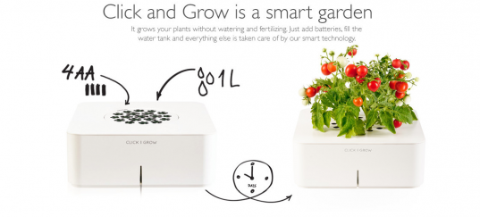 eco kids, green kids, eco baby, green baby, sustainable living for kids, green design for kids, gardening, review, gardening with kids, organic gardening, organic gardening with kids, how to, jennie lyon