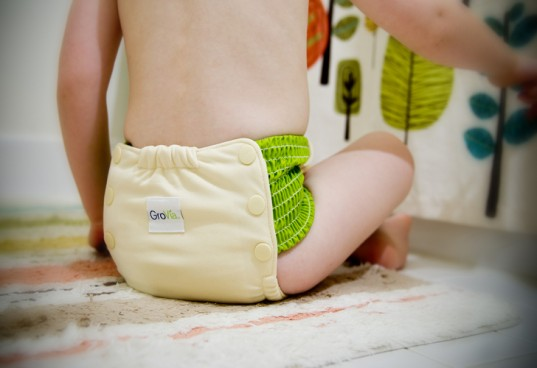 GroVia, Training Pants, Potty Training