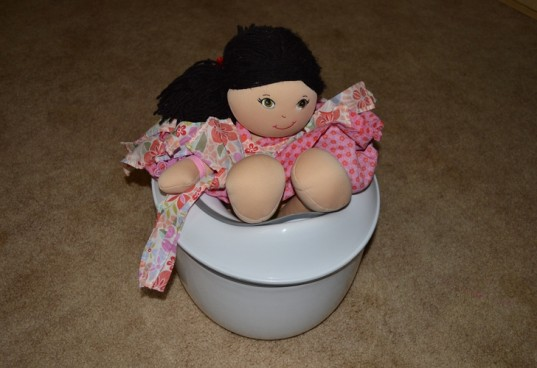 Potty Training, Potty Party, Doll Training, Potty Training Doll