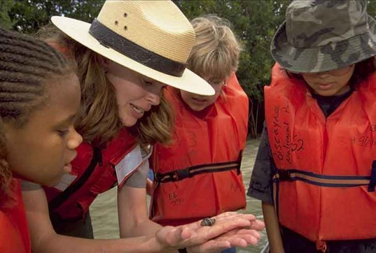 no child left inside act 2013, outdoor education, nature, children, learning, congress, bipartisan support