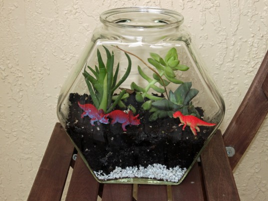 eco kids, green kids, eco baby, green baby, sustainable living for kids, green design for kids, how to, jennie lyon, recycled crafts for kids, diy crafts, recycled fish bowl terrarium, recycled terrarium