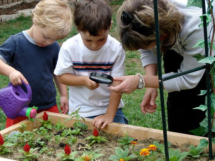 Schools Are Swapping Blacktop For Nature To Immerse Children In Living  Environments During Recess | Inhabitots