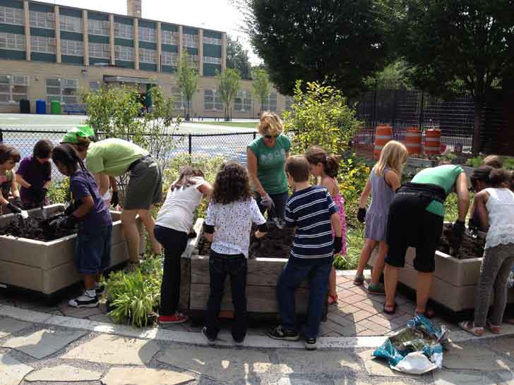 New Green Playground in Brooklyn Designed to Prevent Flooding, Improve Health of City's Waterways