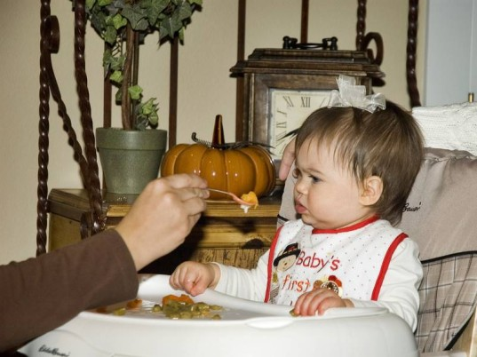 baby food purees, thanksgiving, thanksgiving recipes, thanksgiving recipes for baby, baby thanksgiving, toddler thanksgiving, homemade thanksgiving, easy homemade baby food, healthy spices, herbs in baby food, homemade baby food, spice up baby food, baby holiday meal