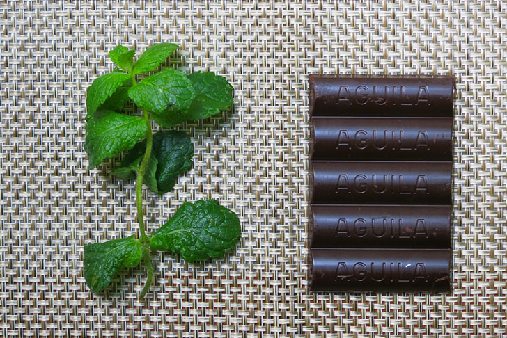 HOW TO: Make refreshing chocolate-dipped mint leaves for a unique Valentine treat