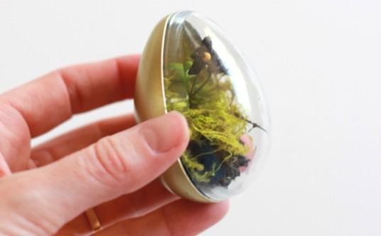 Easter egg crafts, Ways to Reuse Plastic Easter Eggs, terrarium, how to make a terrarium, Easter crafts, Easter