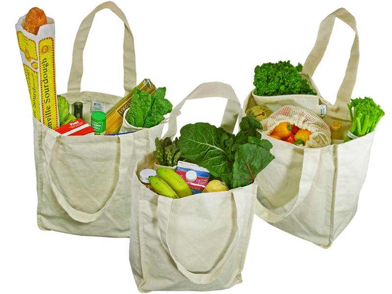 reusable grocery bags facts style guru fashion glitz glamour style unplugged. Black Bedroom Furniture Sets. Home Design Ideas