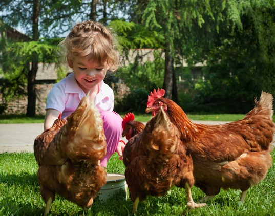 animal therapy, autism therapy, autism treatment, bonding with animals