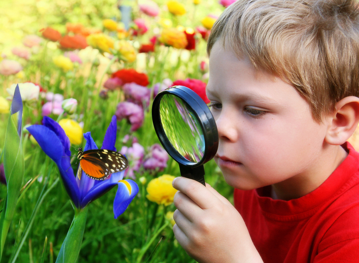 8 themed children 39 s gardens that teach kids how to grow for Gardening with children