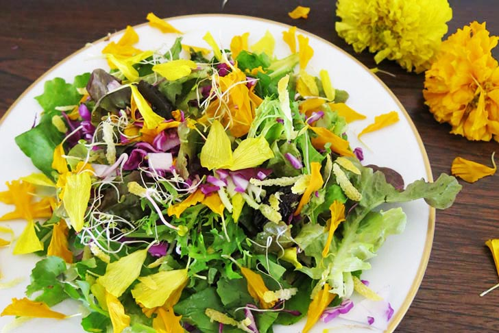 How to make an edible flower power spring salad with marigold how to make an edible flower power spring salad with marigold mightylinksfo
