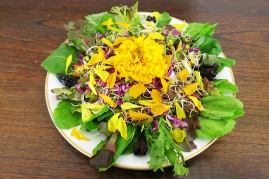 rucola salad, Flower Power Spring Salad With Marigold, calendula, edible flowers, flower salad, how-to, summer salad, spring salad, vegan recipe, healthy salad