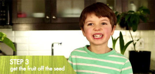 How To Grow A Lemon Tree From Seed, Sucking on a lemon seed, sour lemon, suck a lemon seed, lemon pucker face, lemon face, Growing a lemon from seed, lemon tree, lemon seed, growing a lemon tree from seed, gardening tips, gardening with kids, kids gardening project, grow a lemon plant