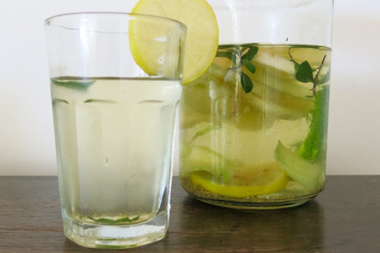 How to make infused water inhabitots for How to make flavored martinis