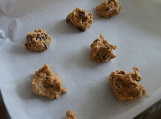 cookie dough bites, protein, vegan protein, vegetarian