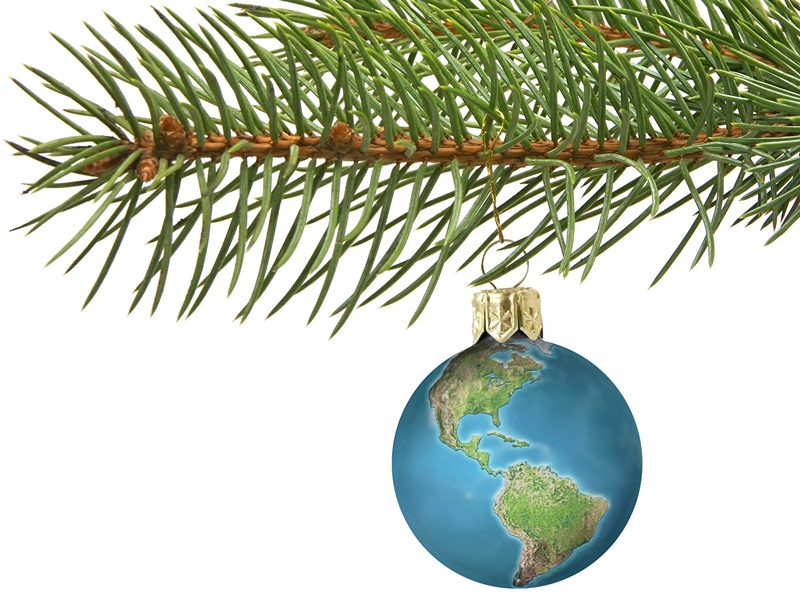 GUIDE: To Choosing the Most Sustainable and Pesticide-Free Christmas Tree  Possible | Inhabitots
