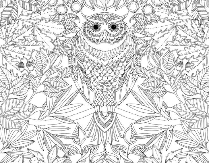 Unleash Your Inner Child With Johanna Basfords Coloring Books For