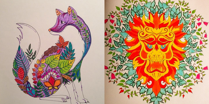 Johanna Basfords Coloring Books For Adults Art