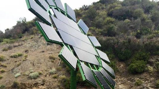solar power, muse school, james cameron, suzy amis cameron, muse school ca, sustainable education, environmentalism, children and environmentalism, solar powered schools, solar power school campus, sustainable energy schools, sun flowers