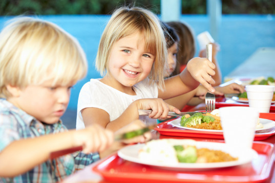 school lunch, eco-friendly schools, compostable plates, compostable plate, polystyrene trays, compostable cafeteria items, recycled plates, recycled cafeteria items, recycled cutlery, compostable cutlery, largest school districts, schools environmental responsibility