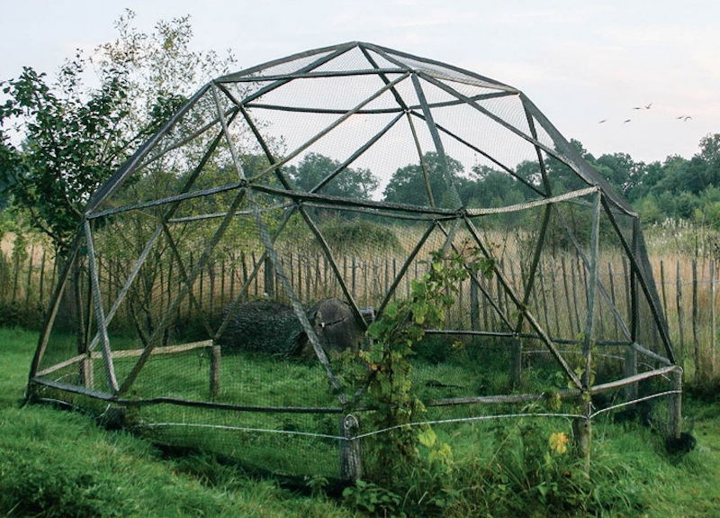 Backyard Dome hubs is a backyard geodesic dome kit that kids can construct