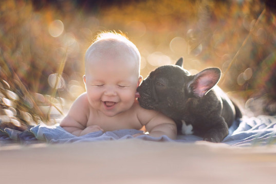 green design, eco design, sustainable design, Ivette Ivens, animal friendships, French Bull Dog puppy, infant photography