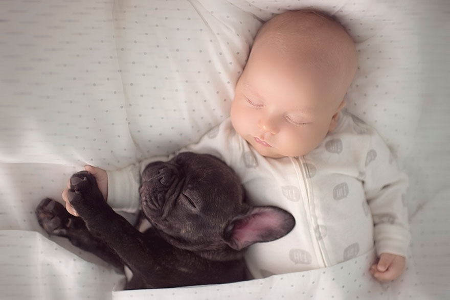 Ivette Ivens Captures The Adorable Friendship Between Her Infant - Ivette ivens baby bulldog