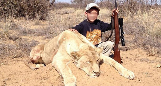 allen tarpley, young boys pose with dead lion, boy plays ipad leaning on dead lion, animal activism, boy hunters