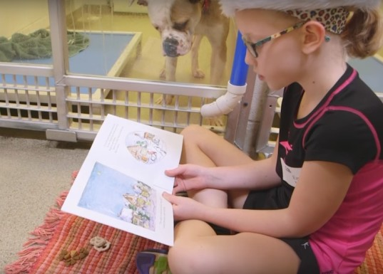 kid friendly, green kids, reading to pets, animal therapy