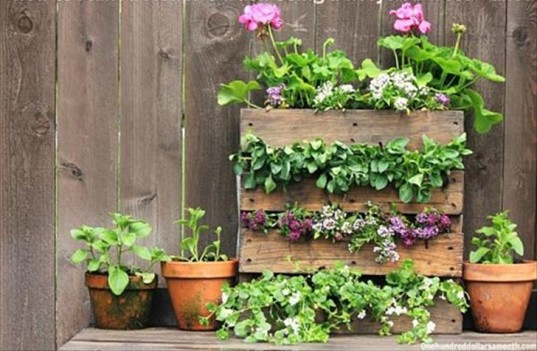 alternative gardening, garden kids, eco-garden, garden containers, upcycled garden, upcycled pallets