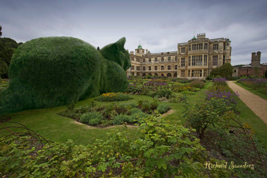 green design, eco design, sustainable design, Richard Saunders, Topiary Cat, Tolly the cat, digital photo illustrations