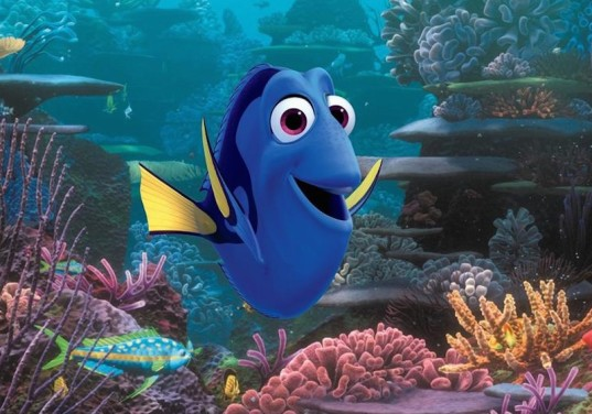 finding dory, fish conservation, animal conservation, movie