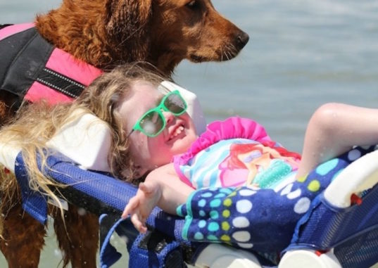 richochet, therapy dog, surfice dog, surfing therapy dog