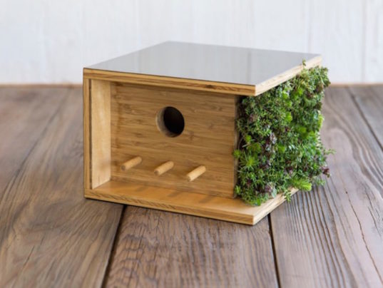 architecture, birdhouse, sourgrassbuilt, green design