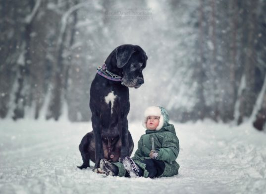 kid friendly, photography, kids and dogs, little dogs and big kids