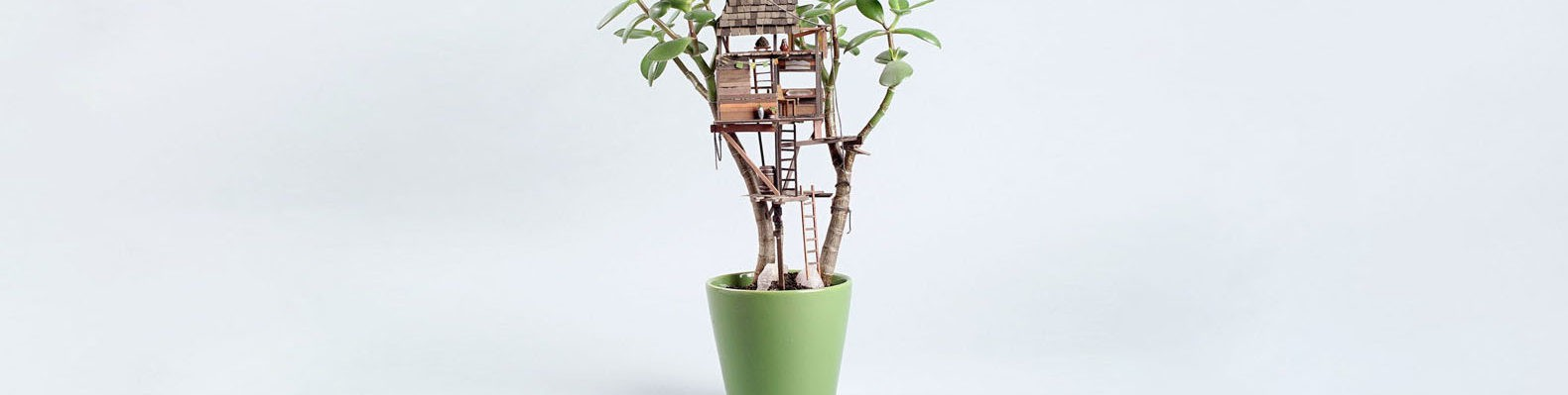 green design, eco design, sustainable design, Jedediah Cory Voltz, bonsai trees, tree house, Virgil Normal