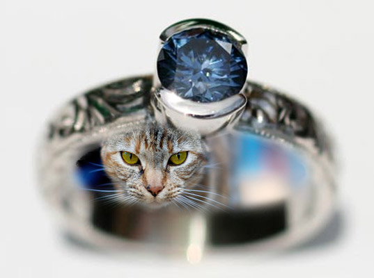 Wear your dead pet, eco-friendly jewelry, eco jewelry, conflict-free jewelry, dead pet jewelry, eco-fashion, sustainable fashion