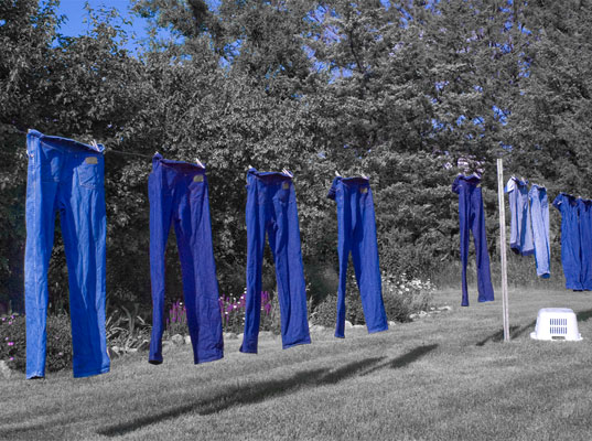 Jeans line drying