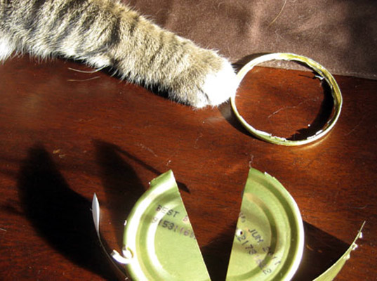 DIY Recycled Cat-Food-Can Ring, diy, catfood can jewelry, upcycled jewelry, cat ring, catfood can ring, make it yourself, do it yourself, craft, recycled, green jewelry, eco jewelry, upcycling, reusing