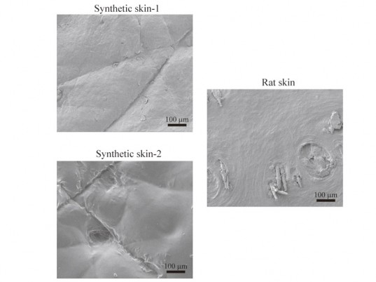synthetic skin, artificial skin