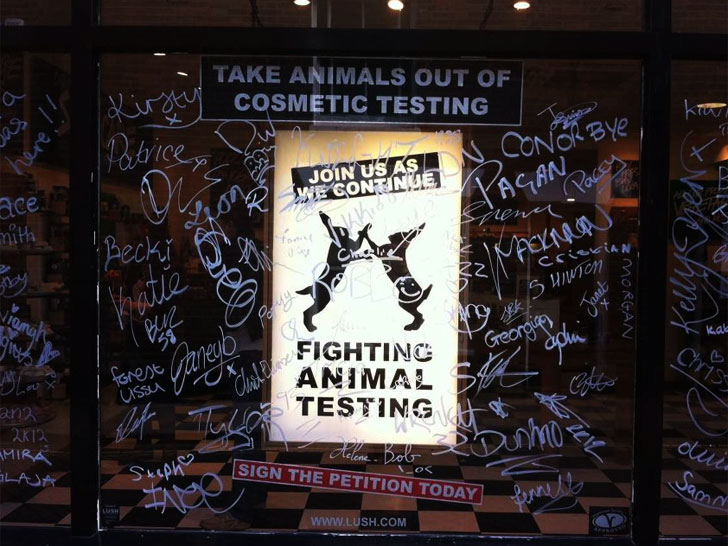 """8e4d60d5db LUSH Cosmetics Fights Animal Testing by """"Torturing"""" Human Subject"""