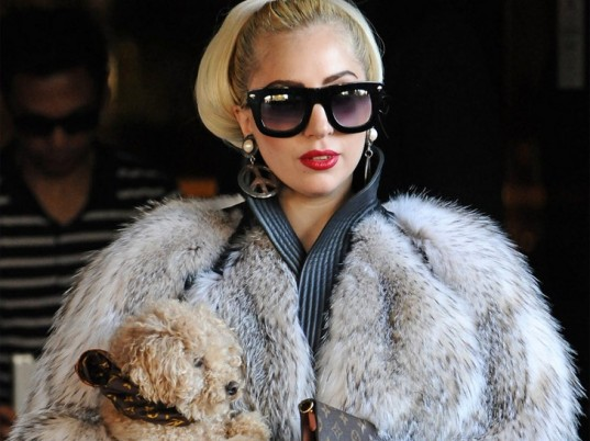 animal cruelty, animal fur, animal rights, animal welfare, eco-celebrities, eco-fashion, eco-friendly celebrities, ethical fashion, fur, green celebrities, green fashion, Lady Gaga, People for the Ethical Treatment of Animals, PETA, Sustainable Fashion, sustainable style